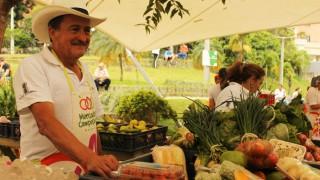 mercados-campesinos Creative Tourism Network