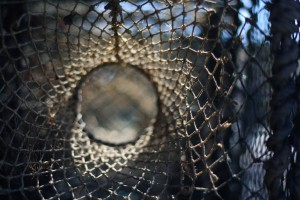 Musée de l'Île d'Entrée – Trappola per aragoste