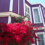 valparaiso-creativetourism (50)